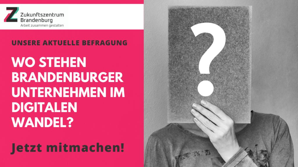 Befragung Brandenburger Unternehmen